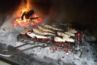 vis-grill-tipical-fish